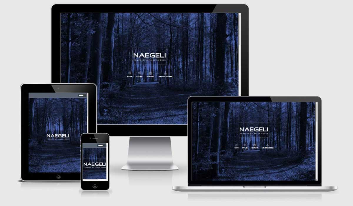 www.naegeli.com